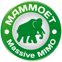 MAMMOET, MAssive MiMO for Efficient Transmission